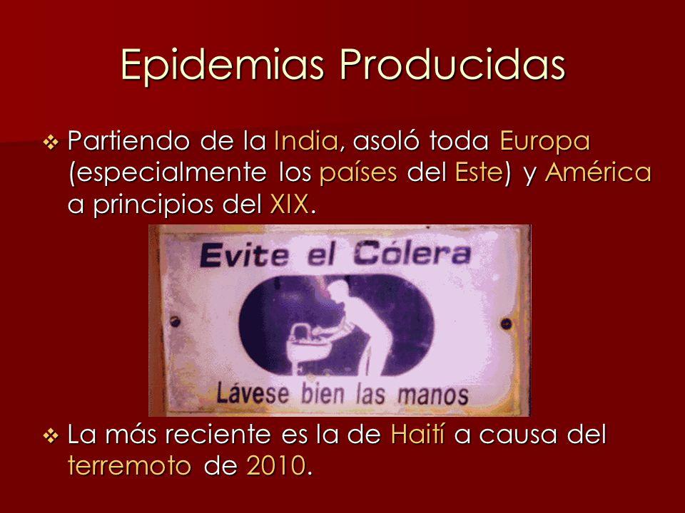 Epidemias Producidas Partiendo de la India, asoló toda Europa (especialmente los países del Este) y América a principios del XIX.