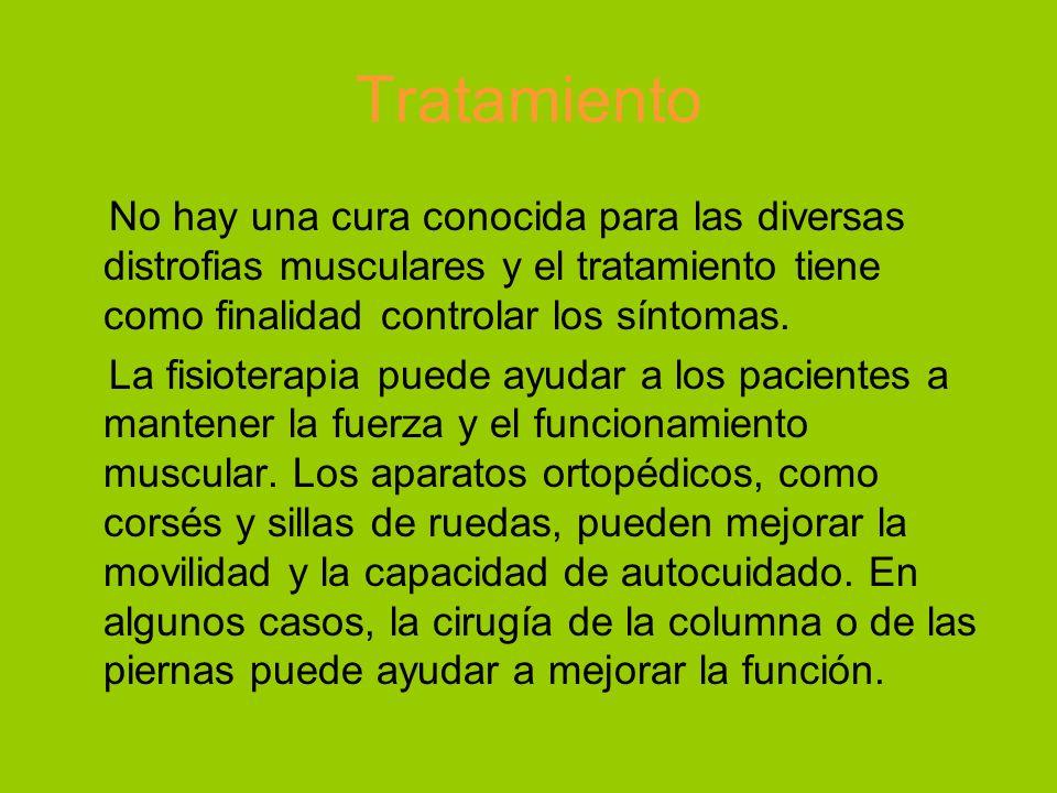 Tratamiento No hay una cura conocida para las diversas distrofias musculares y el tratamiento tiene como finalidad controlar los síntomas.