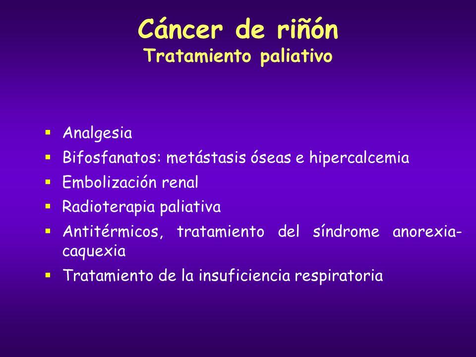 Cáncer de riñón Tratamiento paliativo
