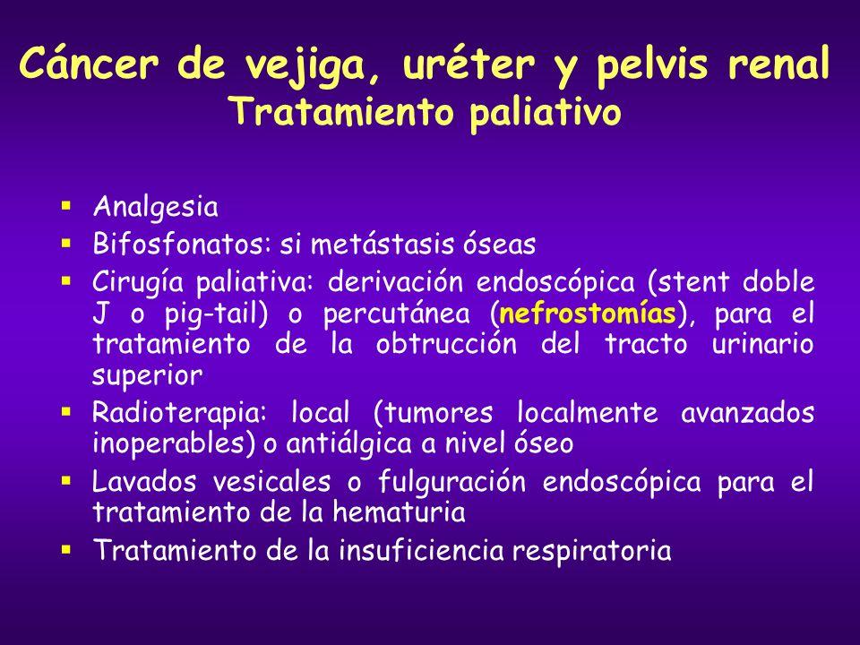 Cáncer de vejiga, uréter y pelvis renal Tratamiento paliativo
