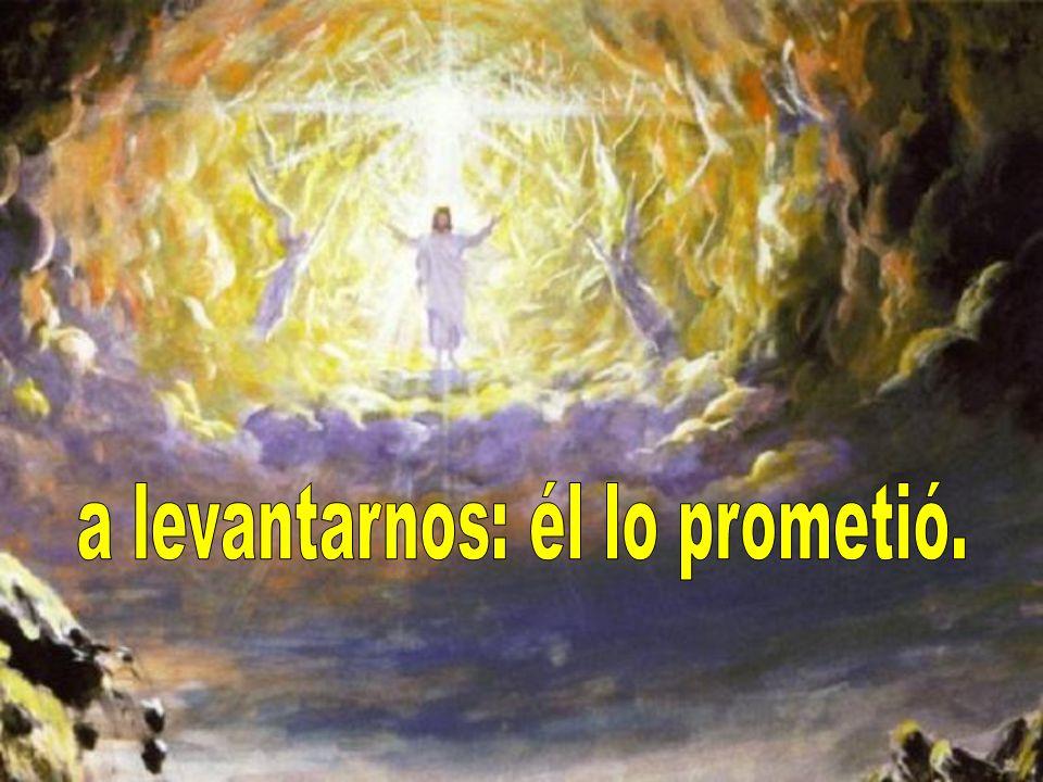 a levantarnos: él lo prometió.