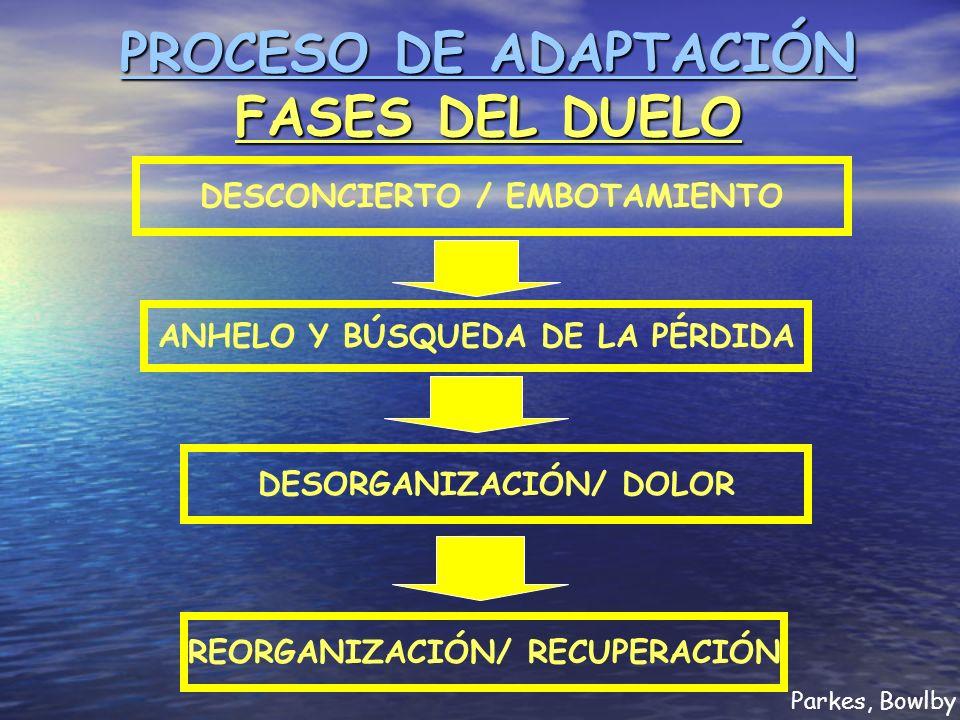 PROCESO DE ADAPTACIÓN FASES DEL DUELO