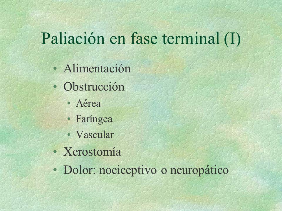 Paliación en fase terminal (I)