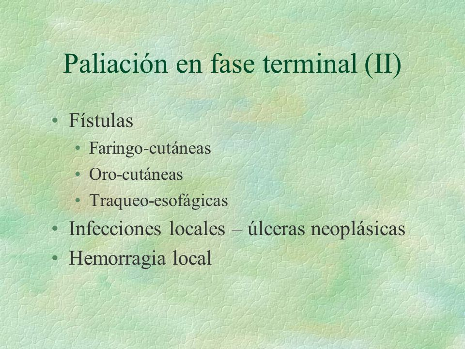 Paliación en fase terminal (II)