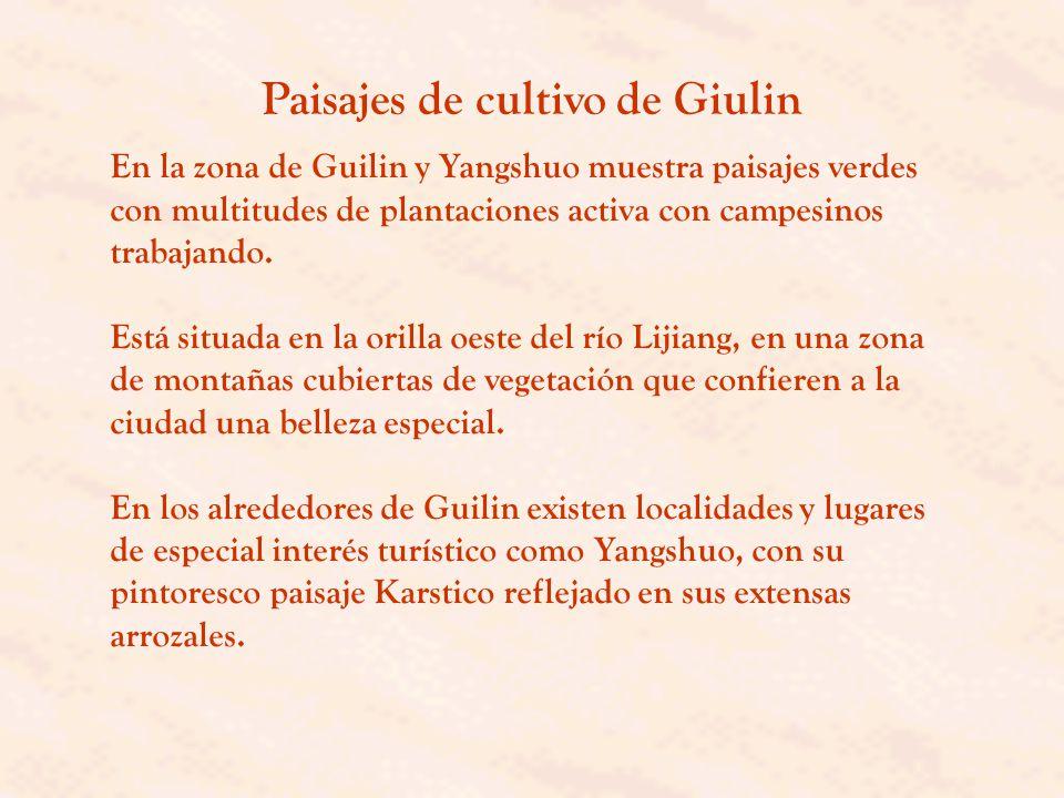 Paisajes de cultivo de Giulin