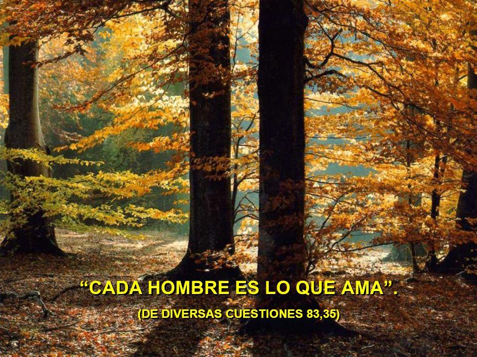 CADA HOMBRE ES LO QUE AMA . (DE DIVERSAS CUESTIONES 83,35)