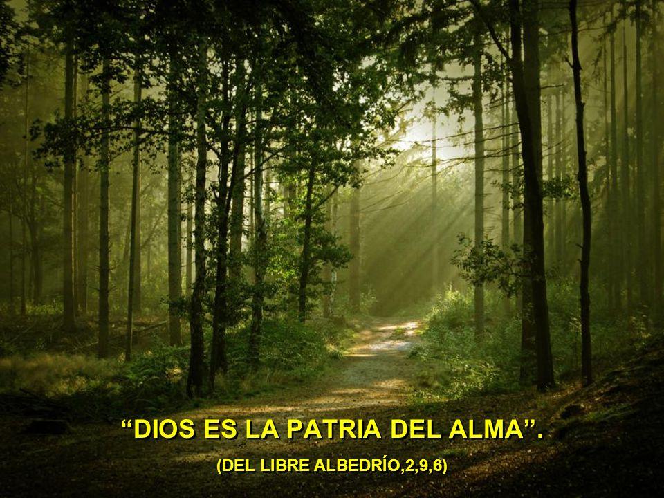 DIOS ES LA PATRIA DEL ALMA . (DEL LIBRE ALBEDRÍO,2,9,6)