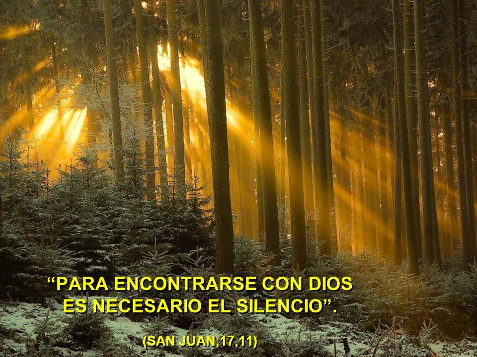 PARA ENCONTRARSE CON DIOS ES NECESARIO EL SILENCIO . (SAN JUAN,17,11)