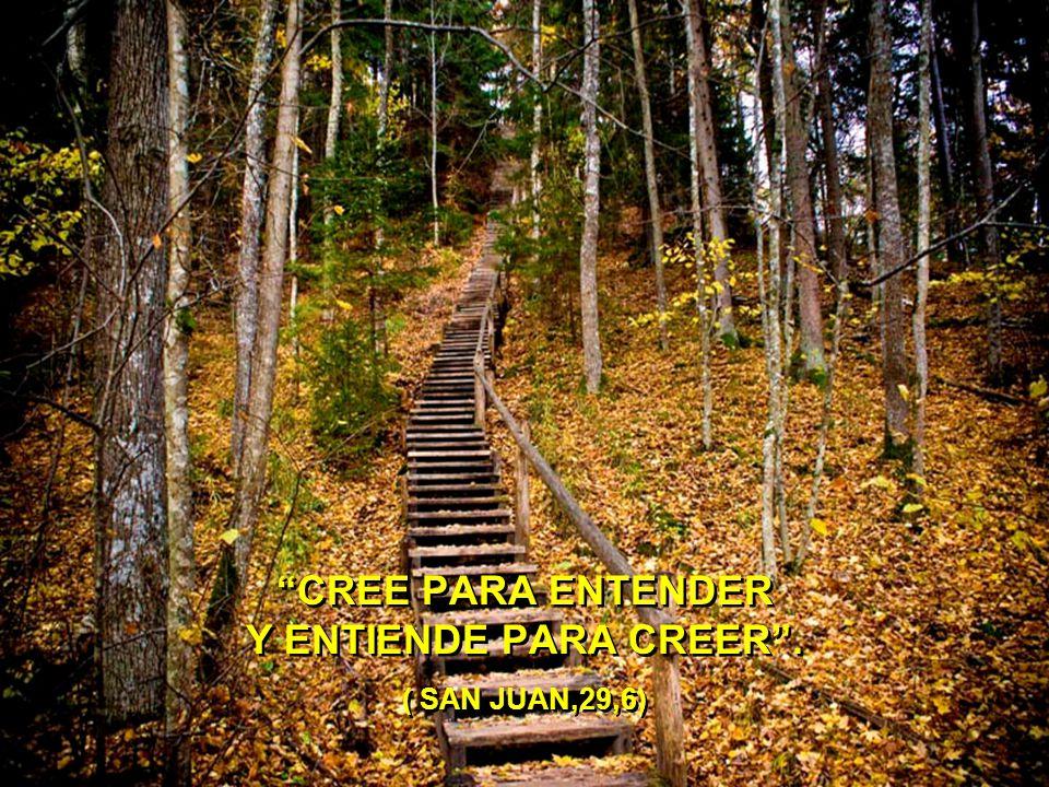 CREE PARA ENTENDER Y ENTIENDE PARA CREER . ( SAN JUAN,29,6)