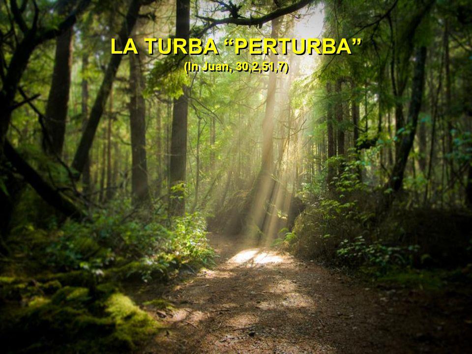LA TURBA PERTURBA (In Juan, 30,2,51,7)
