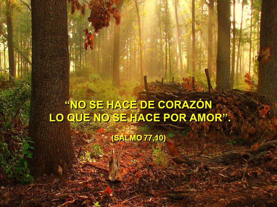 NO SE HACE DE CORAZÓN LO QUE NO SE HACE POR AMOR . (SALMO 77,10)