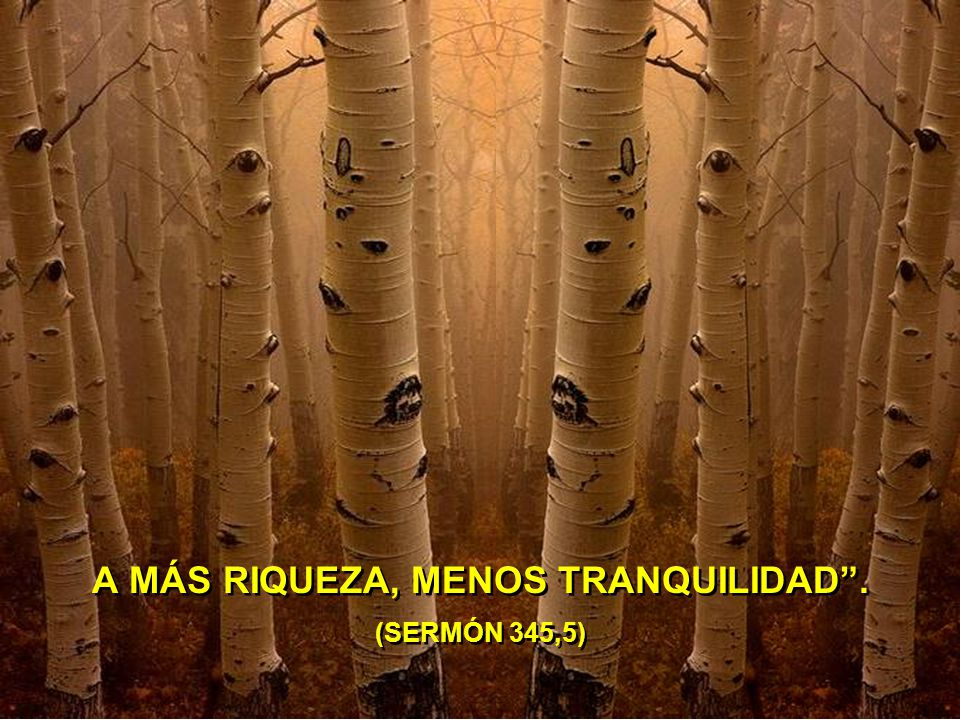 A MÁS RIQUEZA, MENOS TRANQUILIDAD . (SERMÓN 345,5)