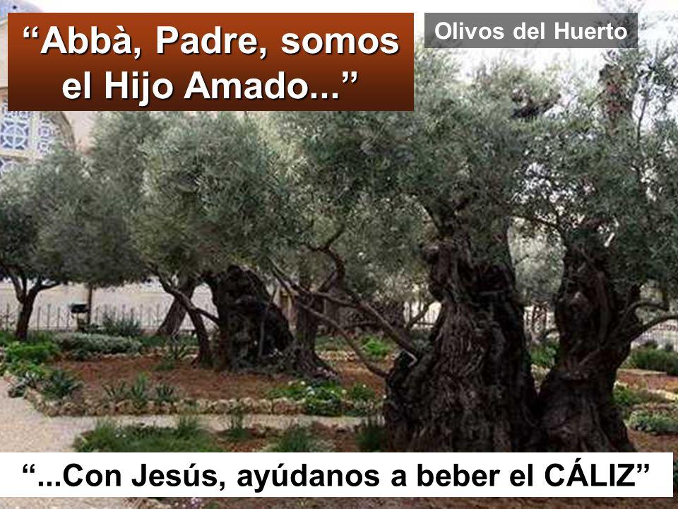 Abbà, Padre, somos el Hijo Amado...