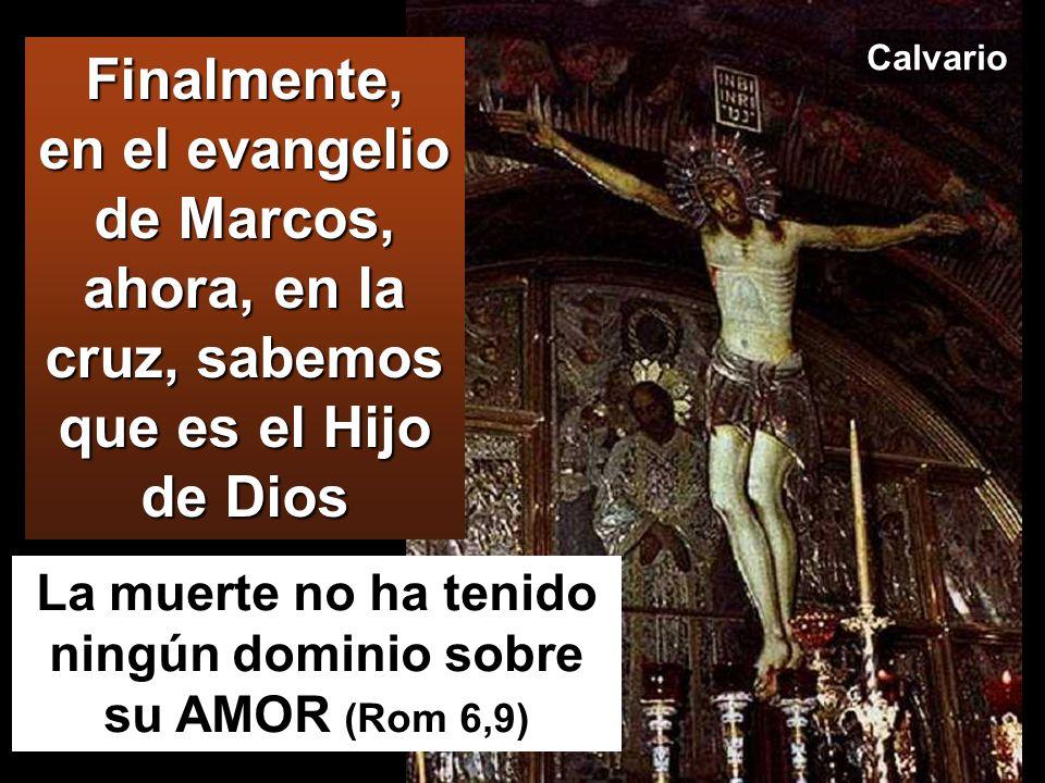 La muerte no ha tenido ningún dominio sobre su AMOR (Rom 6,9)