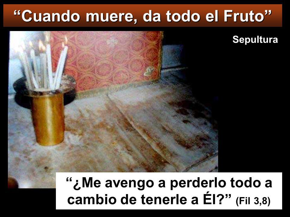 Cuando muere, da todo el Fruto