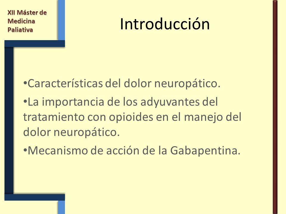 Introducción Características del dolor neuropático.