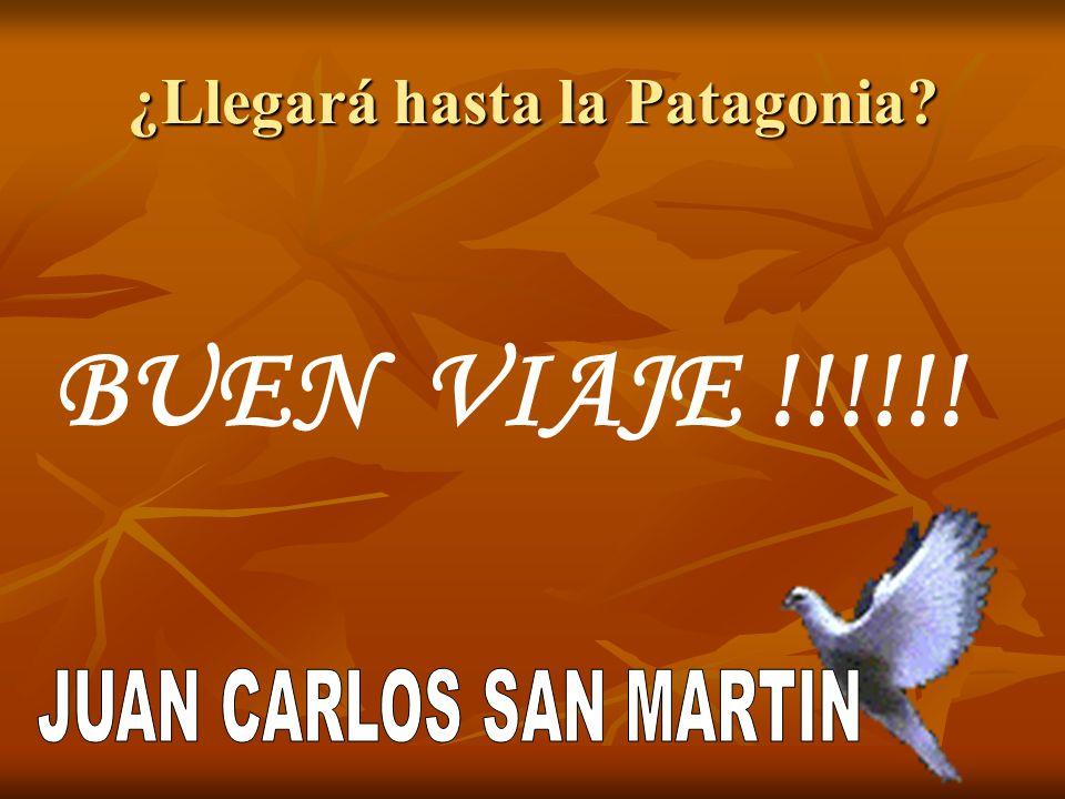 ¿Llegará hasta la Patagonia