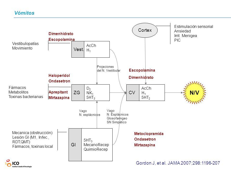 N/V Vómitos CV ZG Vest. GI Cortex