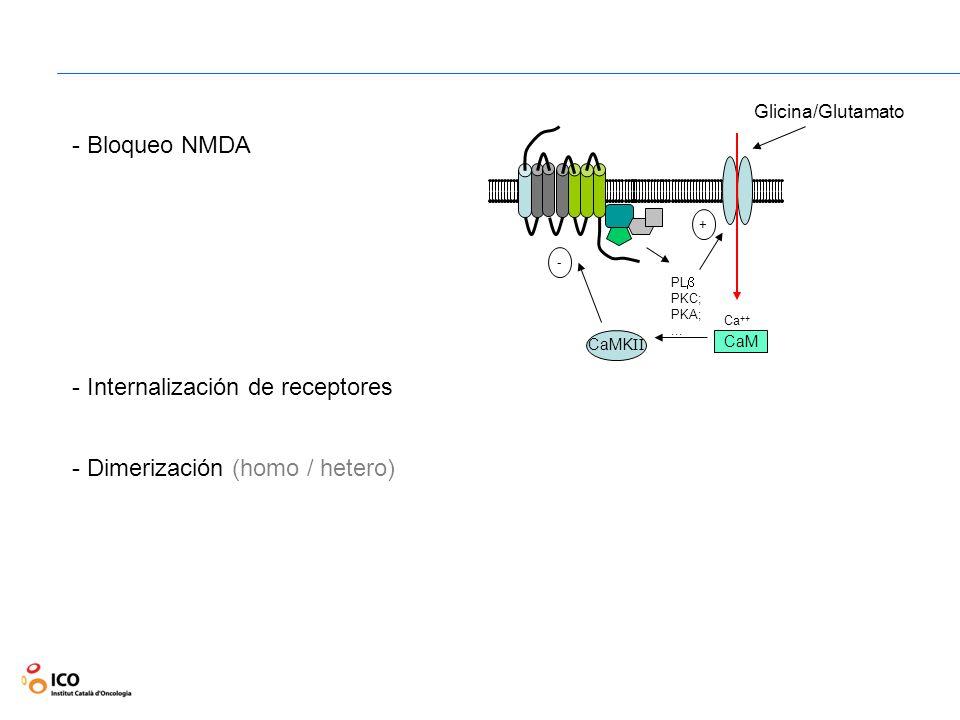Internalización de receptores