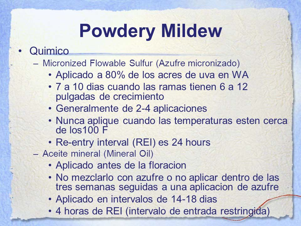 Powdery Mildew Quimico Aplicado a 80% de los acres de uva en WA