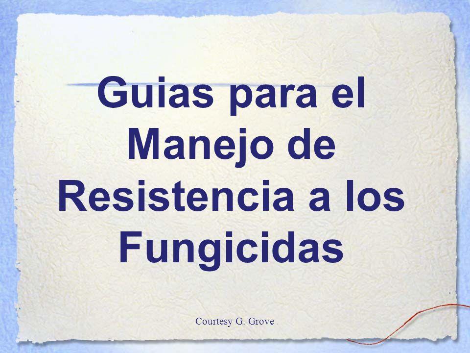 Guias para el Manejo de Resistencia a los Fungicidas