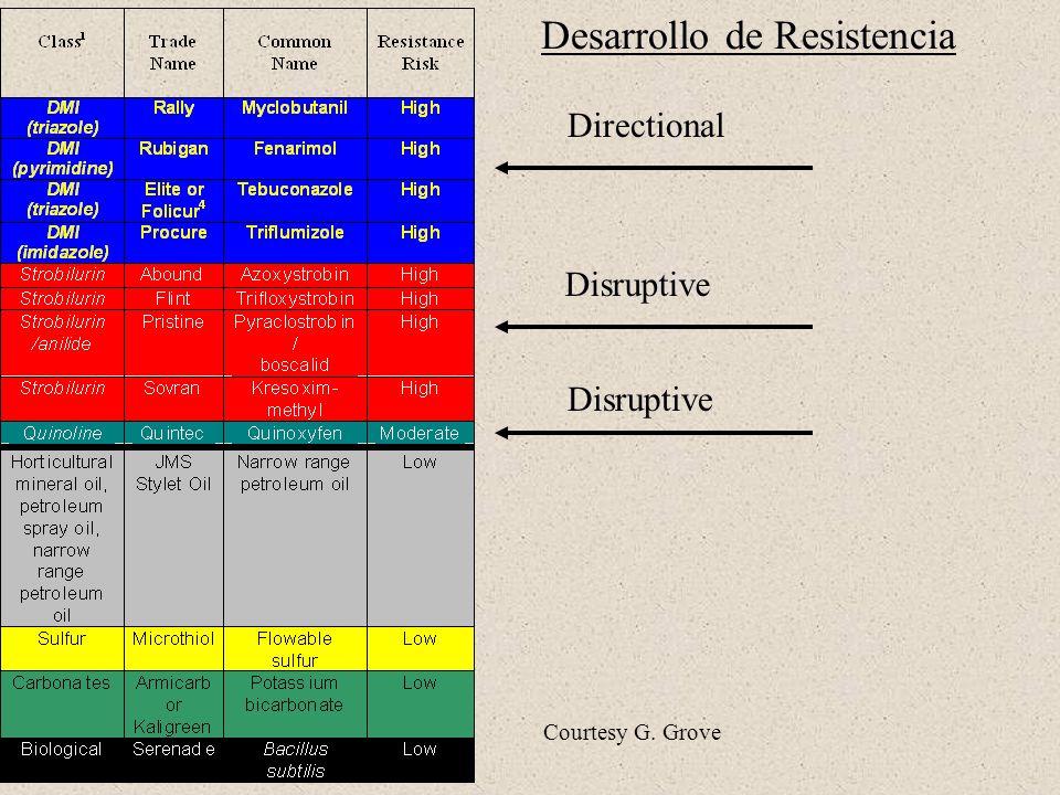 Desarrollo de Resistencia