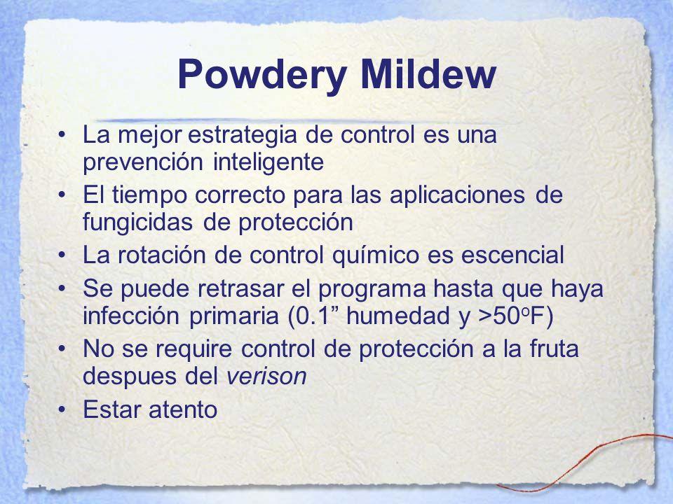 Powdery Mildew La mejor estrategia de control es una prevención inteligente. El tiempo correcto para las aplicaciones de fungicidas de protección.