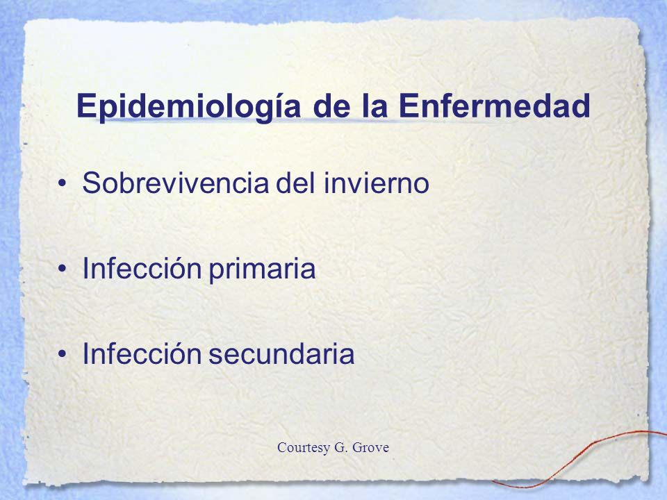 Epidemiología de la Enfermedad
