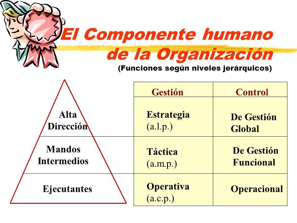 El Componente humano de la Organización (Funciones según niveles jerárquicos)