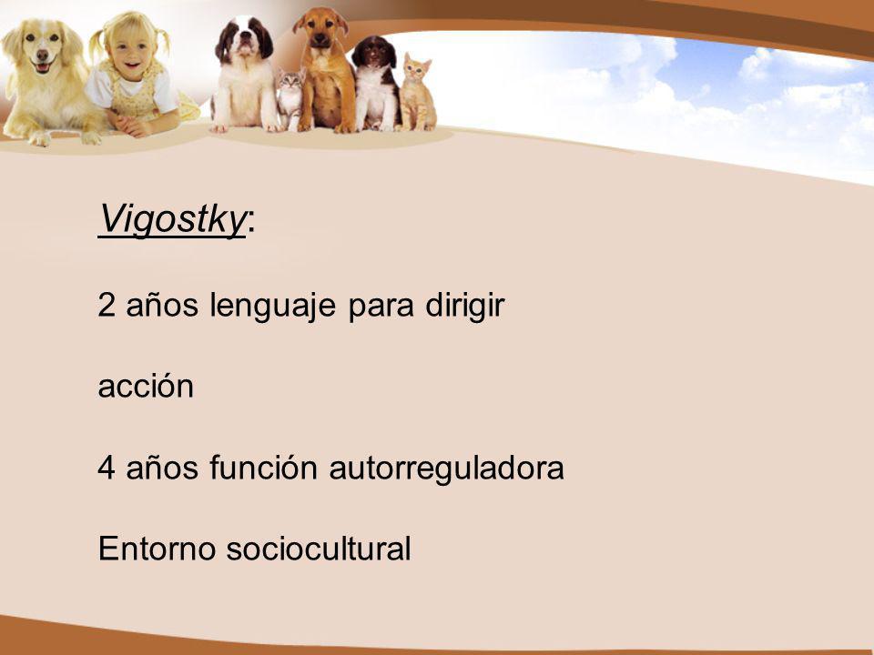 Vigostky: 2 años lenguaje para dirigir acción 4 años función autorreguladora Entorno sociocultural
