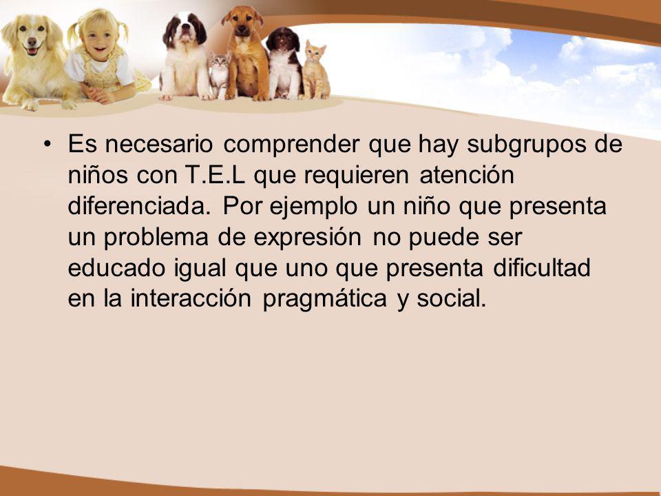Es necesario comprender que hay subgrupos de niños con T. E