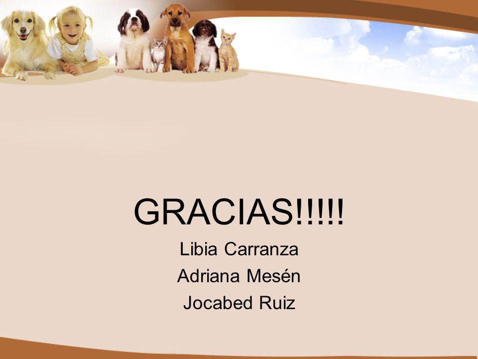 GRACIAS!!!!! Libia Carranza Adriana Mesén Jocabed Ruiz