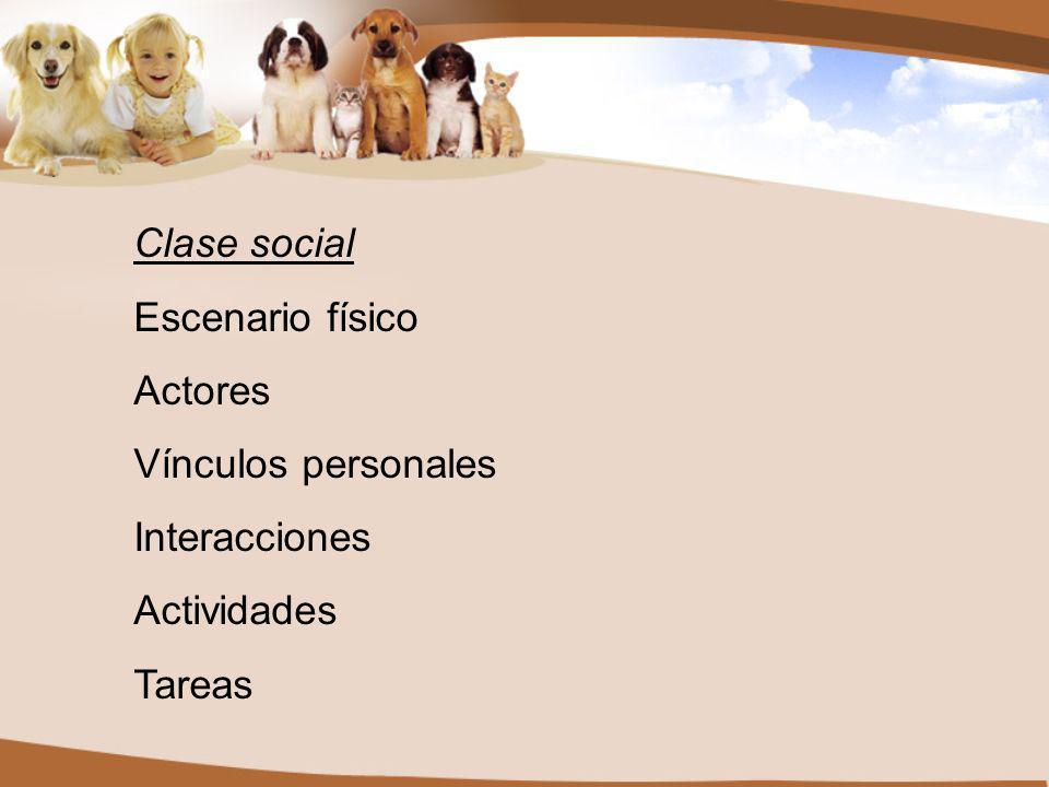 Clase social Escenario físico Actores Vínculos personales Interacciones Actividades Tareas