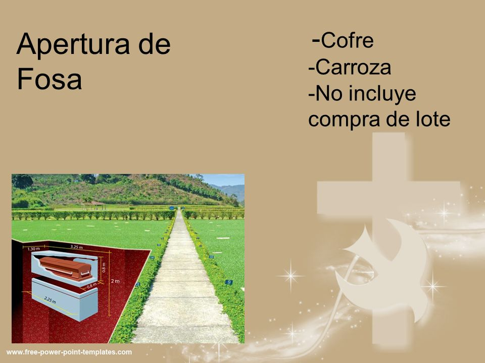 -Cofre -Carroza -No incluye compra de lote Apertura de Fosa