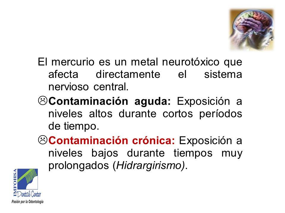 El mercurio es un metal neurotóxico que afecta directamente el sistema nervioso central.