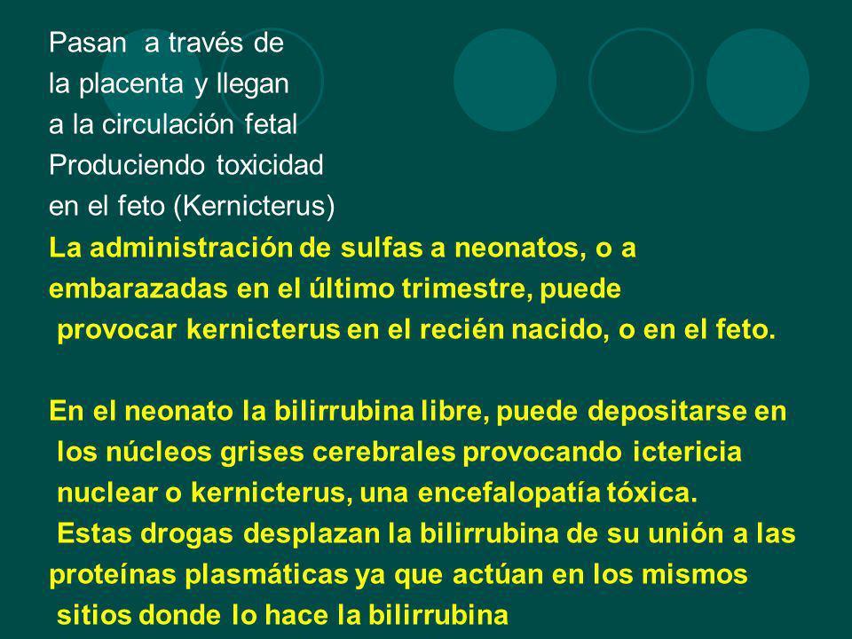 Pasan a través de la placenta y llegan. a la circulación fetal. Produciendo toxicidad. en el feto (Kernicterus)