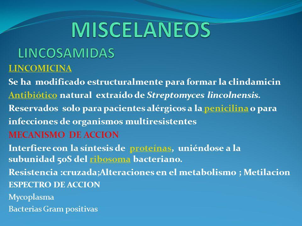 MISCELANEOS LINCOSAMIDAS