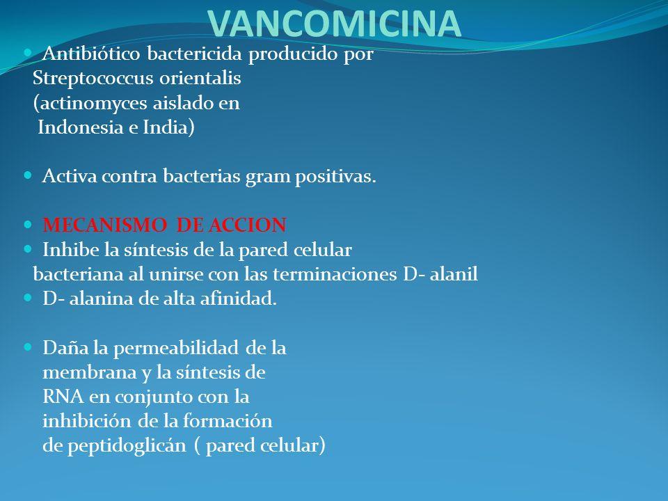 VANCOMICINA Antibiótico bactericida producido por