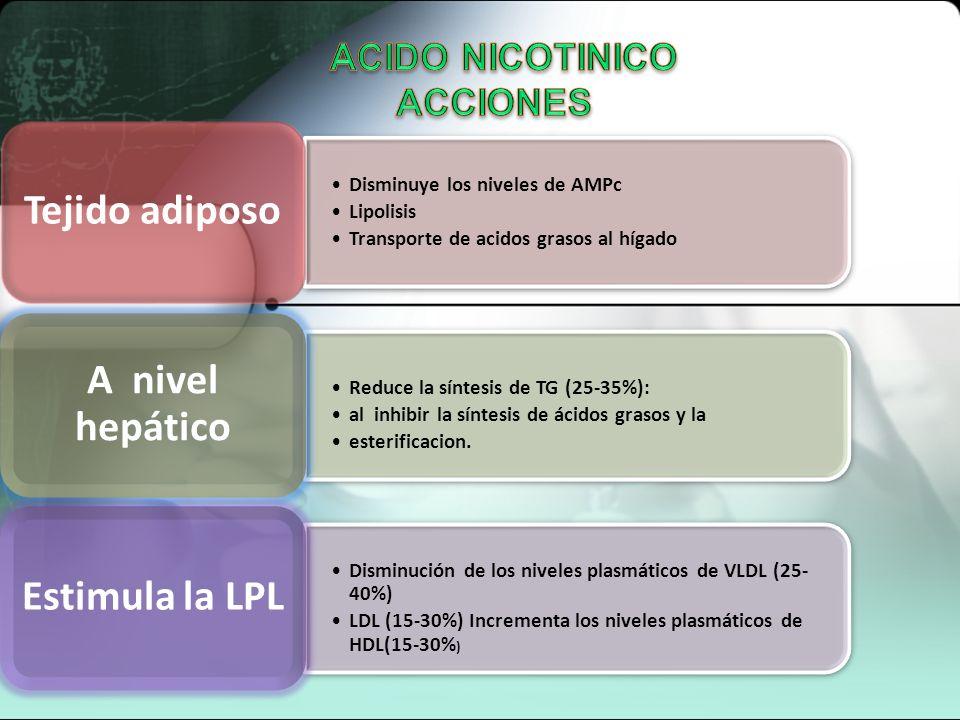 ACIDO NICOTINICO ACCIONES