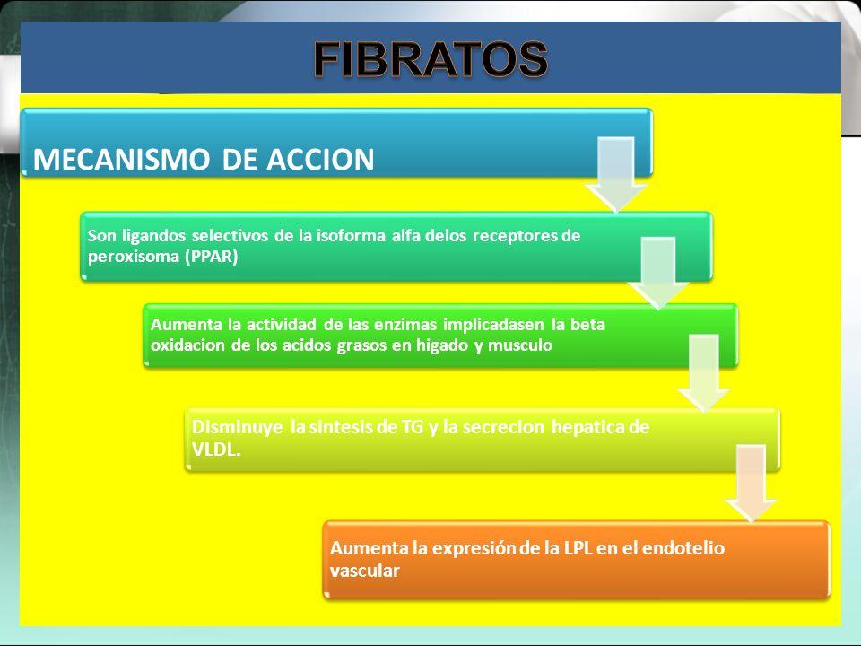 FIBRATOS MECANISMO DE ACCION