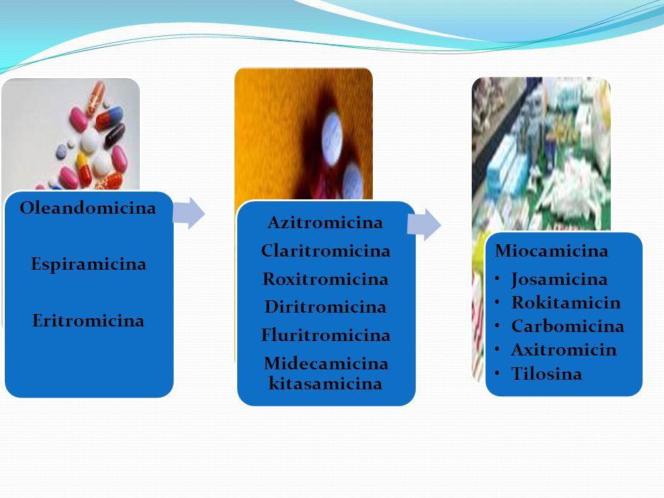 Midecamicina kitasamicina