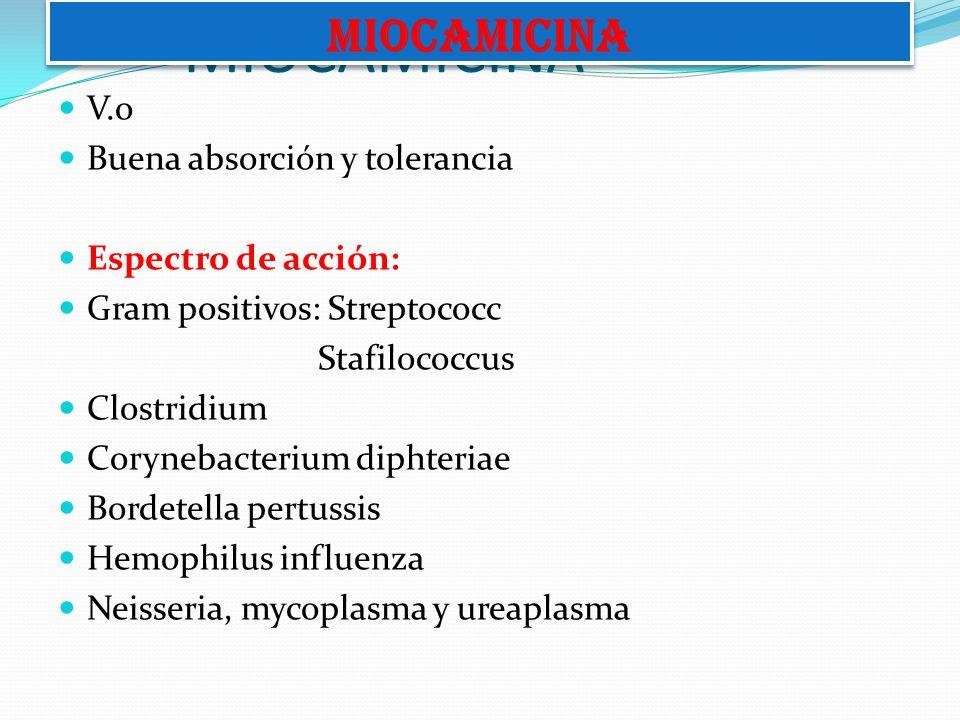 MIOCAMICINA MIOCAMICINA V.o Buena absorción y tolerancia