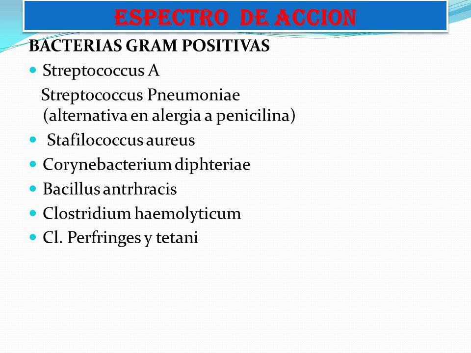 ESPECTRO DE ACCION BACTERIAS GRAM POSITIVAS Streptococcus A