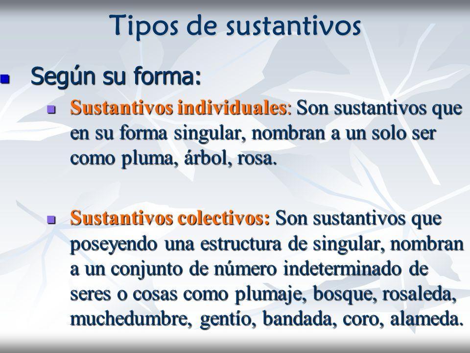 Tipos de sustantivos Según su forma: