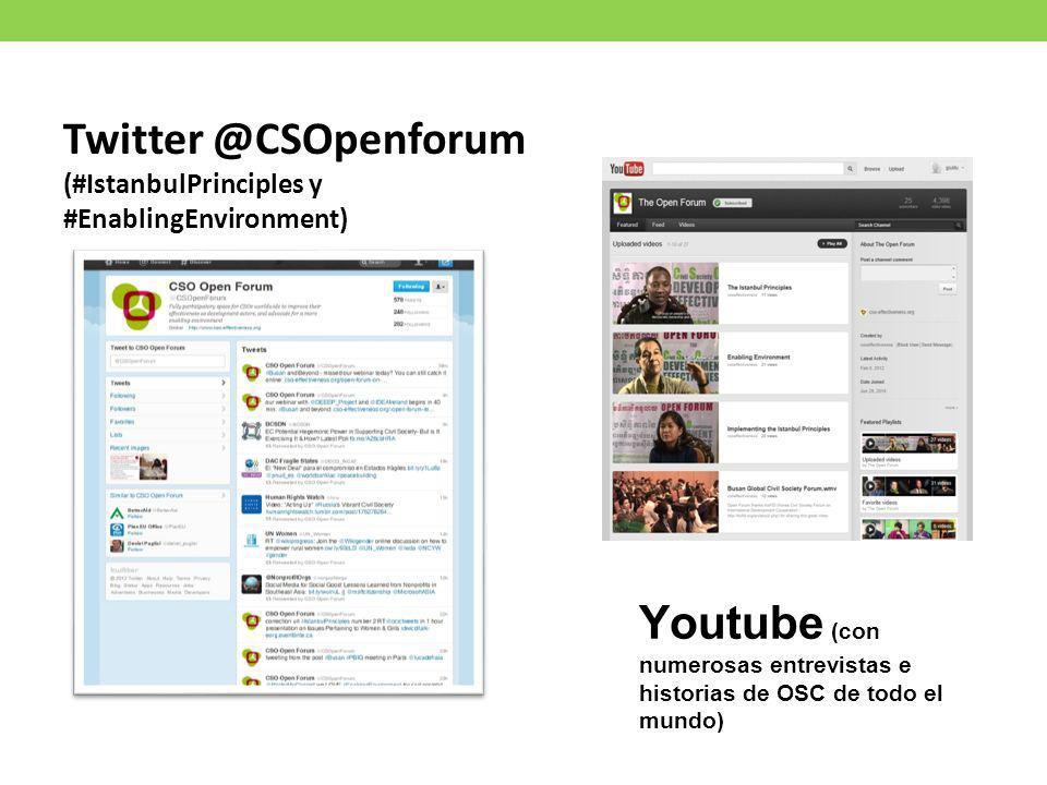Twitter @CSOpenforum (#IstanbulPrinciples y.
