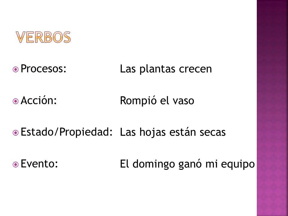 Verbos Procesos: Acción: Estado/Propiedad: Evento: Las plantas crecen