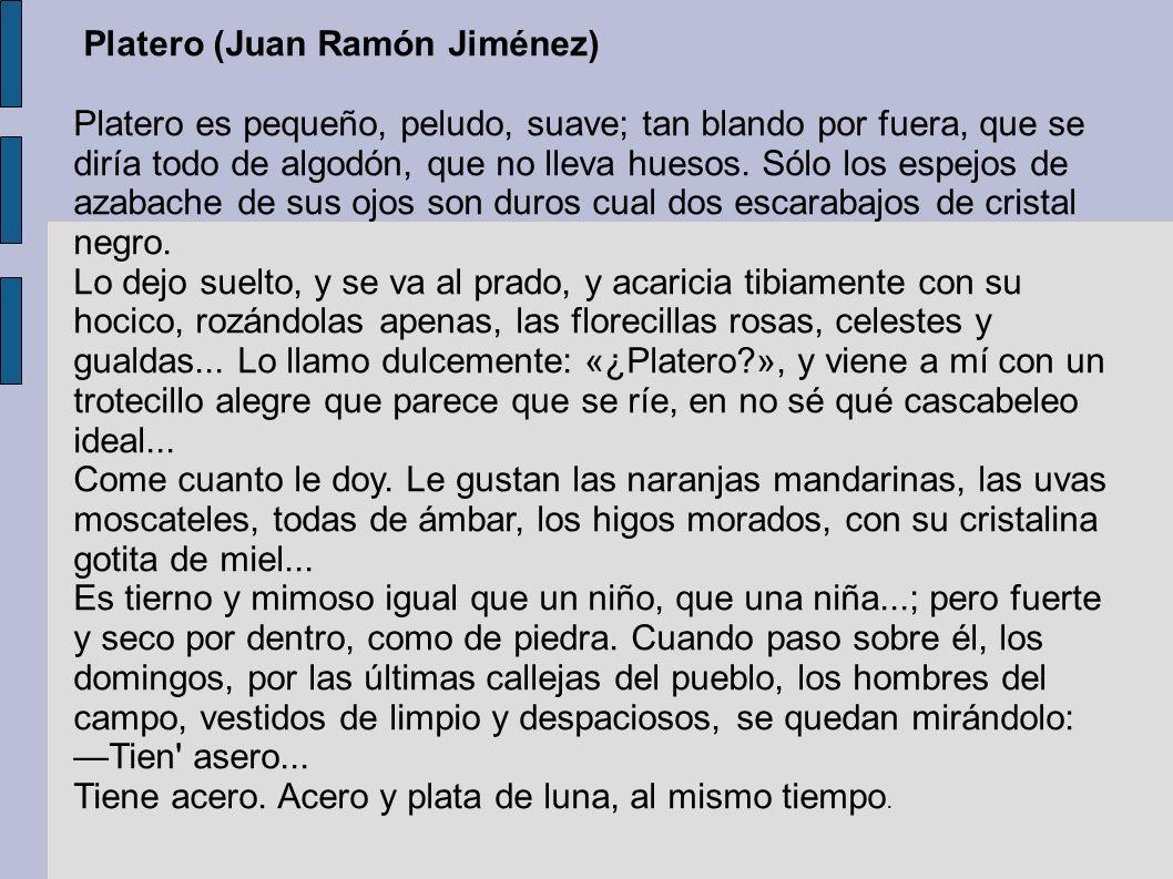 Platero (Juan Ramón Jiménez)