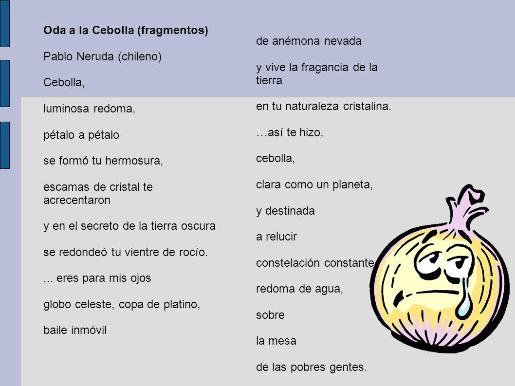 Oda a la Cebolla (fragmentos)