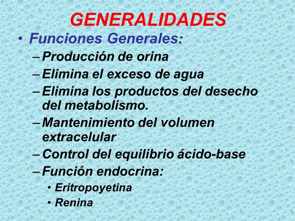 GENERALIDADES Funciones Generales: Producción de orina