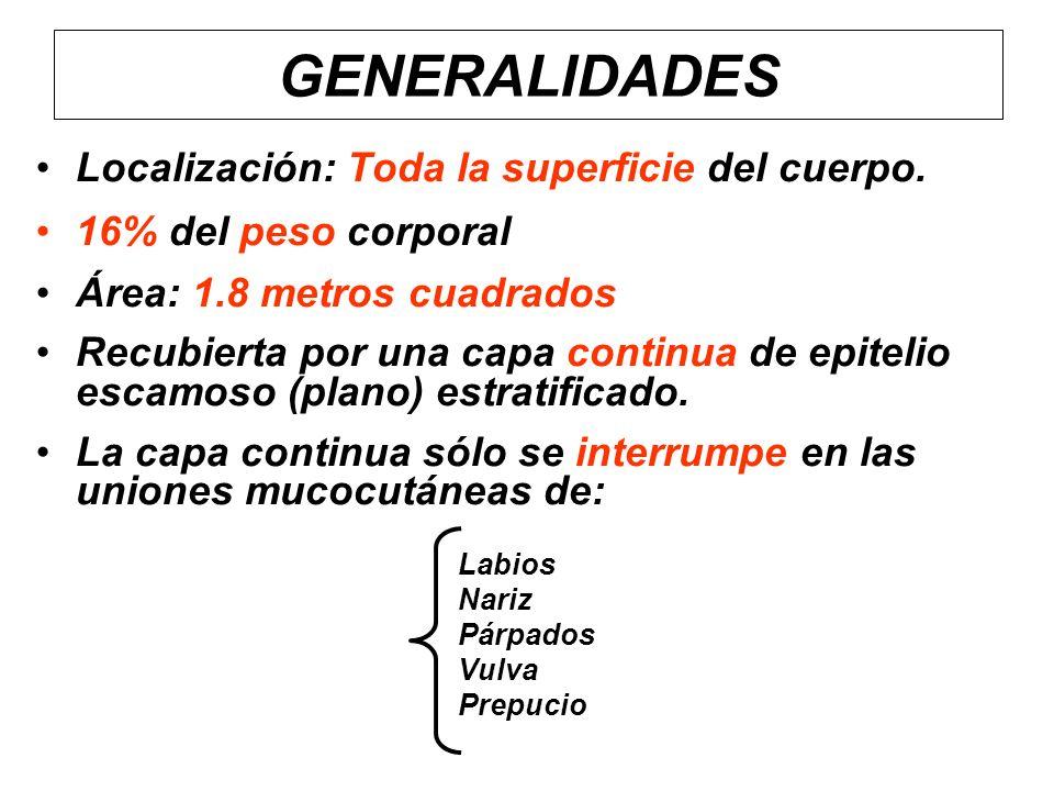 GENERALIDADES Localización: Toda la superficie del cuerpo.